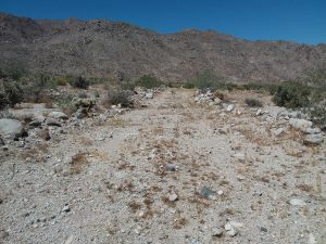 photo of the Desert Knoll property