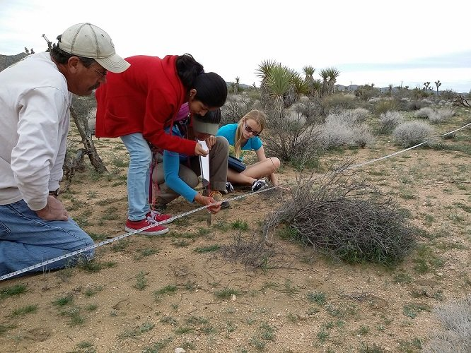 photo of volunteers conducting research in the desert
