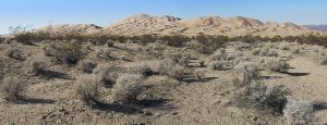 photo of Mojave Desert landscape