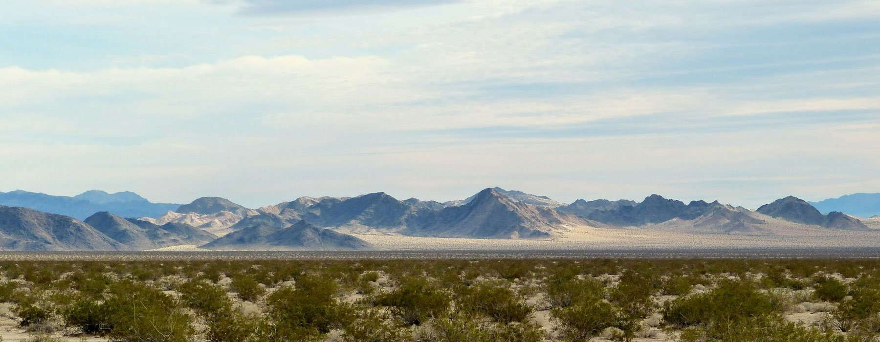 photo of a desert landscape