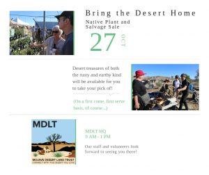 "A photo of ""Bring the Desert Home"" event"