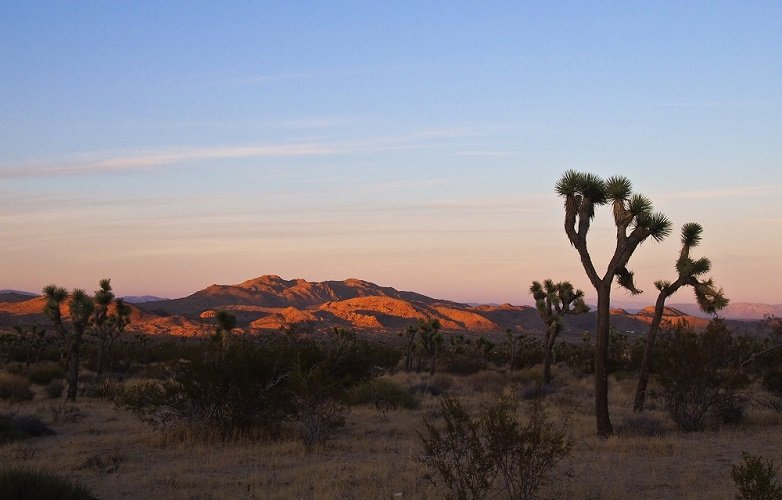 photo of a desert landscape at sunset