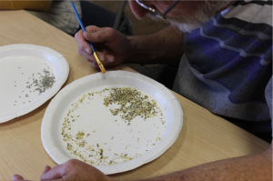 photo of a man processing seeds for storage in the MDLT Seed Bank
