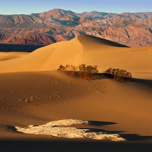 Death Valley Image