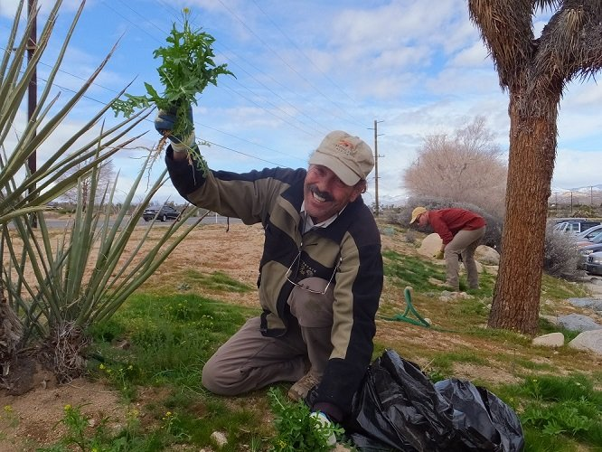 photo of a volunteer happily pulling weeds
