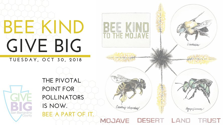 A photo of Bee Kind for the Mojave Logo
